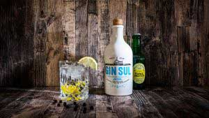 Der Gin Sul Test - Hier als Gin Tonic