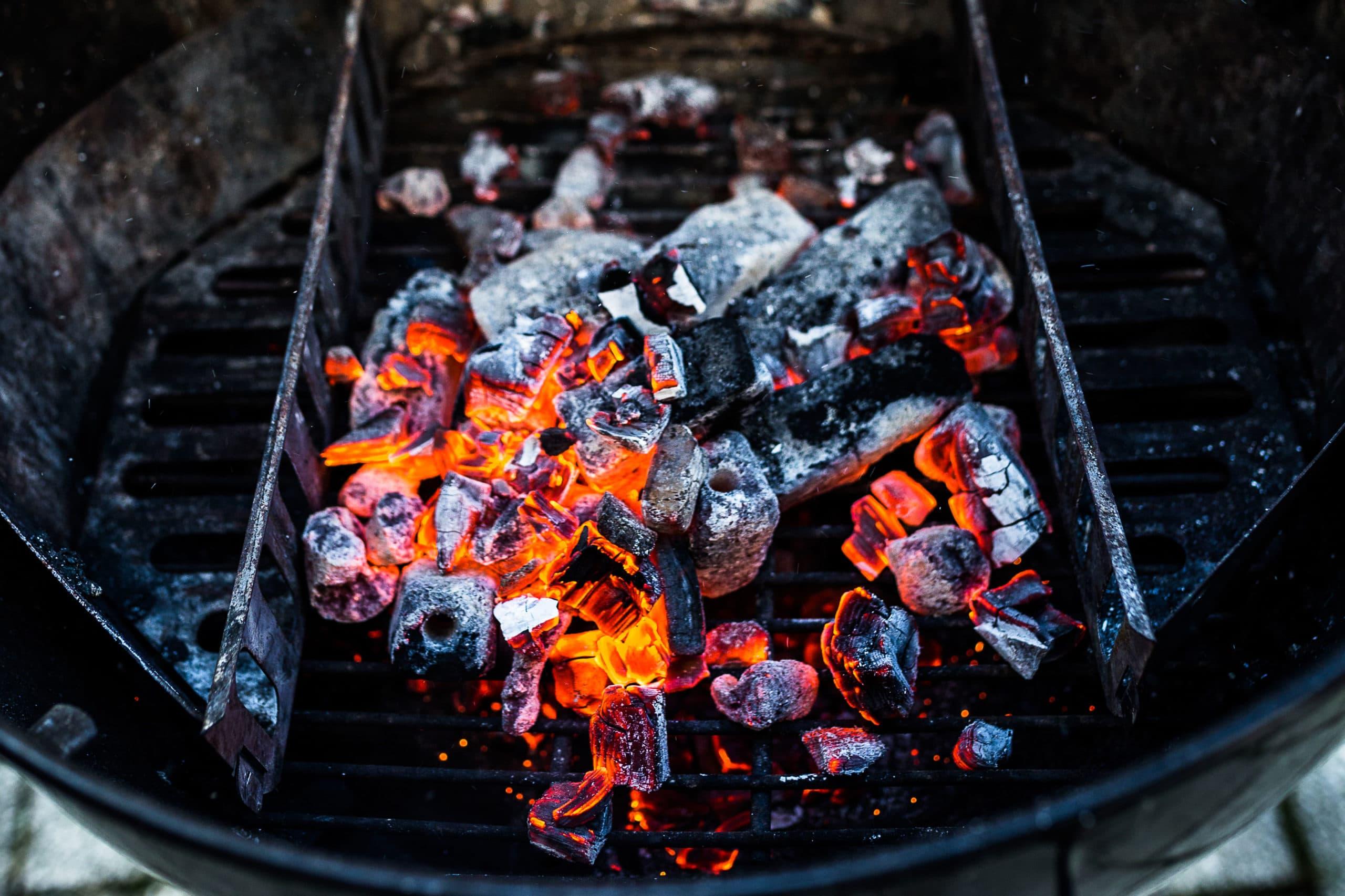 Holzkohle – der Ratgeber zum Grillen mit Kohle